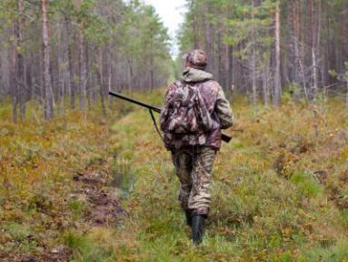 По иску Бугурусланской межрайонной прокуратуры в судебном порядке двое судимых граждан лишены право на охоту